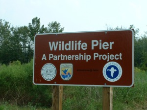 Wildlife Project Sign